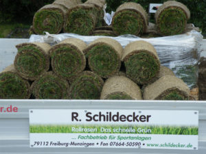 Roman Schildecker-Neubau-Umbau-Rasenspielfelder (1