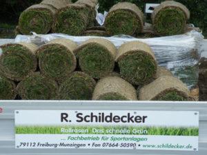 roman schildecker-rollrasen-anzucht-vertrieb-verlegung (6)